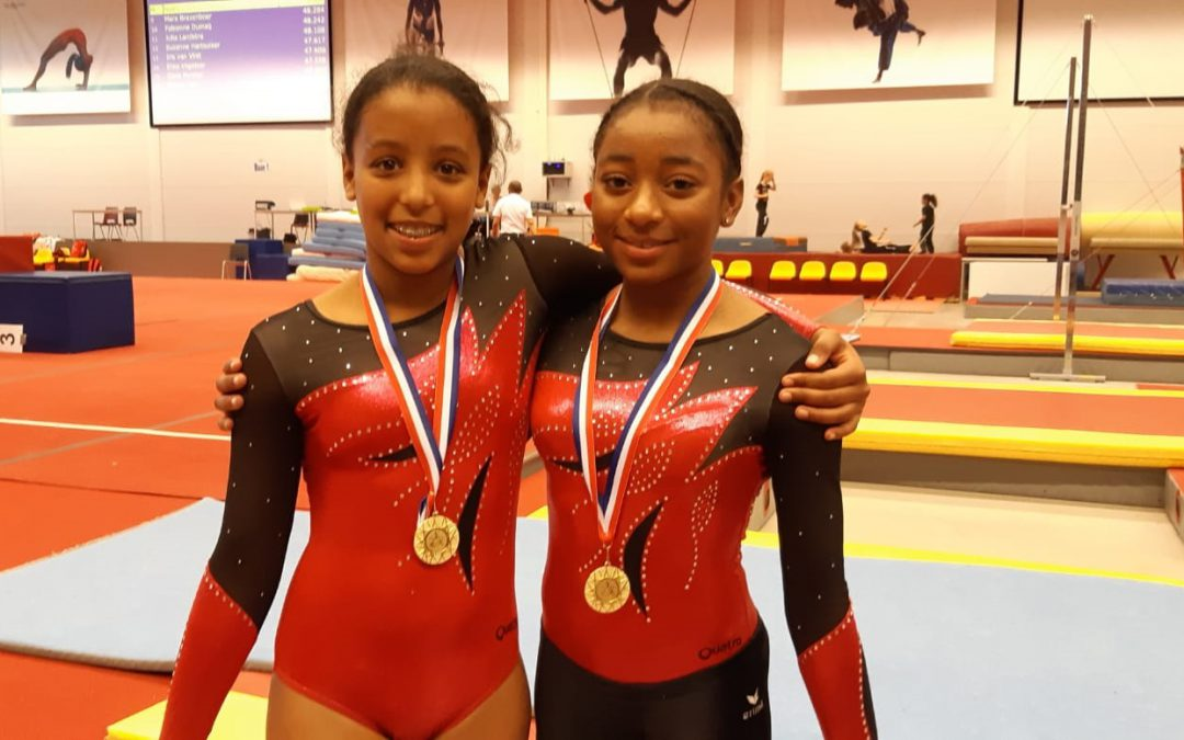 De TurnAround turnsters op de Districtsfinale en Toestelfinale 4e divisie, District Zuid-Holland