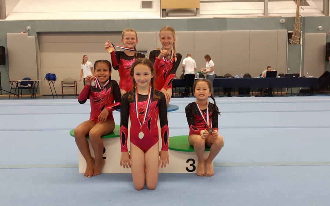 Al onze 5 jonge turnsters van TurnAround halen medailles  op de Districtsfinale Zuid-Holland